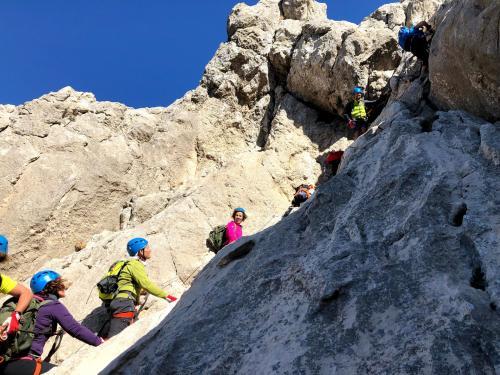 Group on trekking excursion