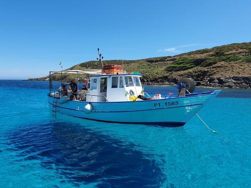 Angeltourismusboot während eines Tagesausfluges nach Asinara