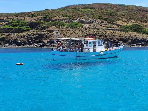 Angeltourismus im Golf von Asinara
