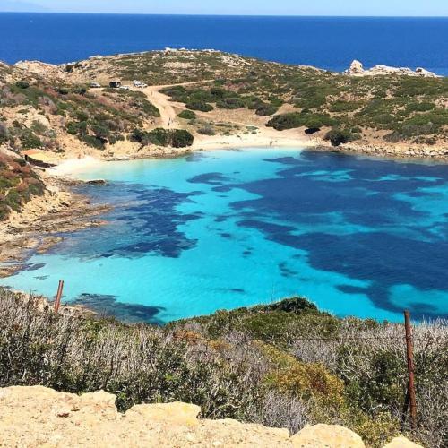 Asinara island beach