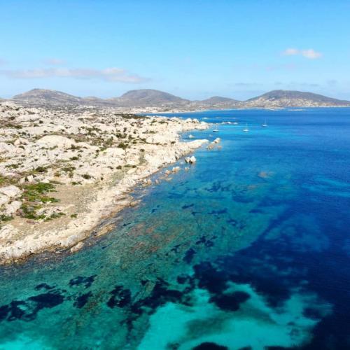 Gulf and Asinara island