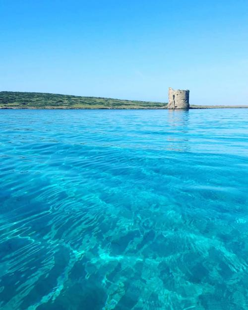 Torre della Pelosa in Stintino