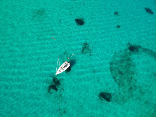 Segelboot im Meer der Insel Asinara