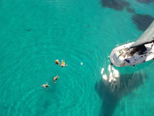 Wanderer schwimmen bei Segeltouren im kristallklaren Meer von Asinara