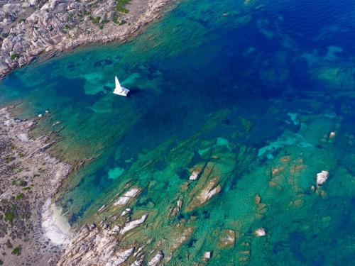Catamaran in the Gulf of Asinara