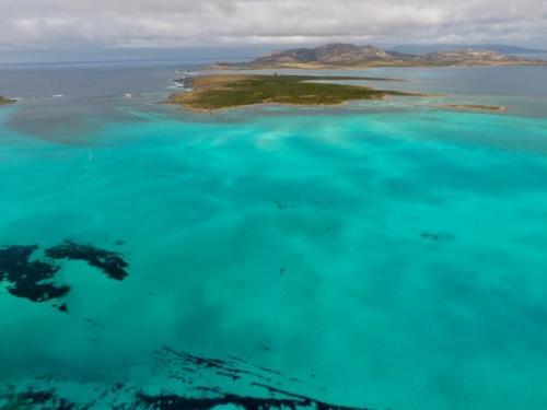 Asinara e Isola Piana