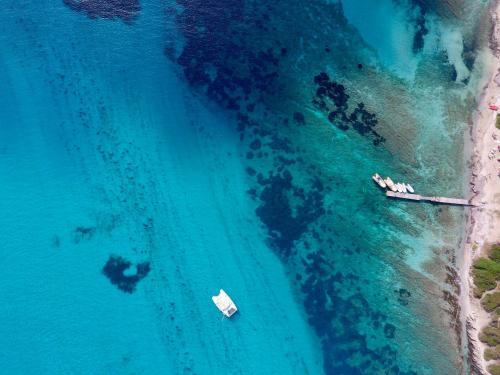 Catamaran in the crystalline sea of Asinara
