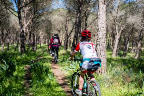 Bike excursionists to Torregrande in Oristano