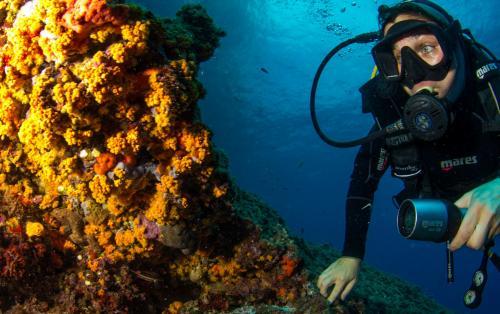 Student in den Gewässern von Bosa