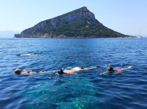 Hikers swim in the Gulf of Olbia during the excursion