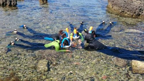Group of kids during a snorkeling lesson with an instructor