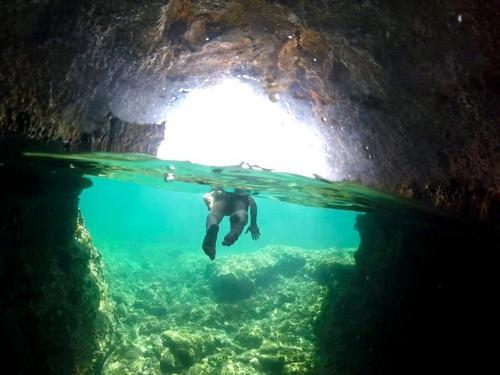 Boy snorkeling dans la côte d'Alghero à Porto Conte