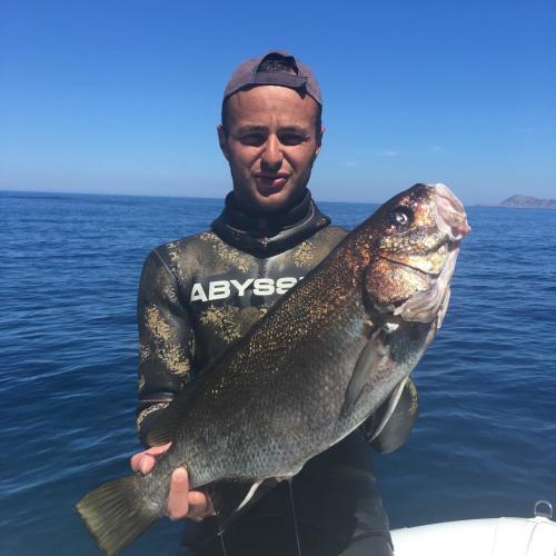 Führer mit frisch gefangenem Fisch in Porto Conte