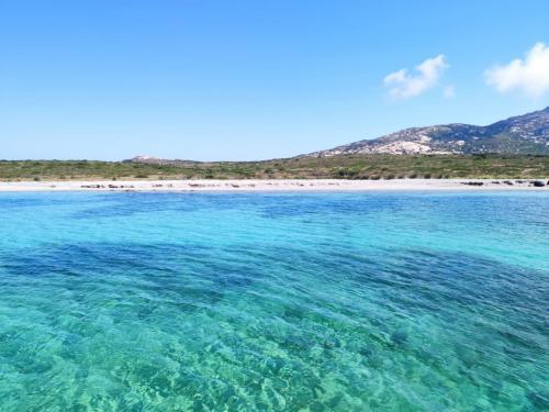 Kristallines Meer von Asinara