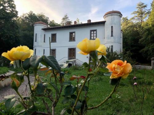 Flores en Villa Piercy
