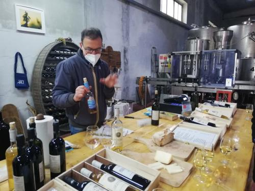 Guide presents wine production