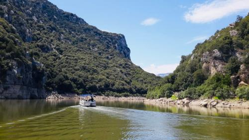 Nature and the Cedrino river by boat