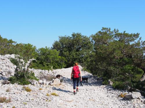 Hiker in Punta Salinas