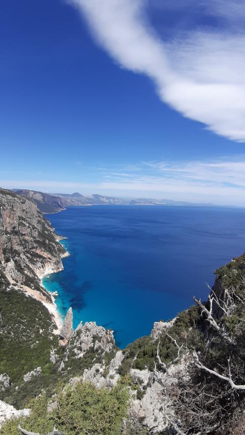 View from Punta Salinas