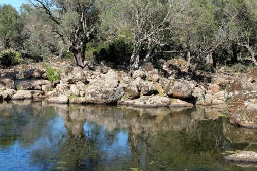 Nature on the Golgo Plateau