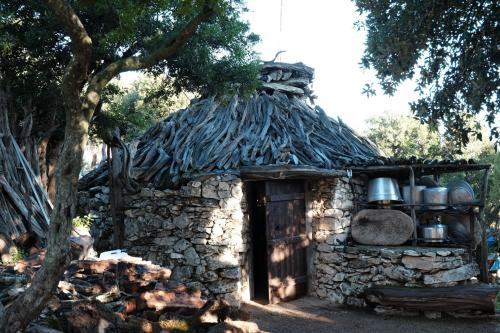 Hut in sheepfold