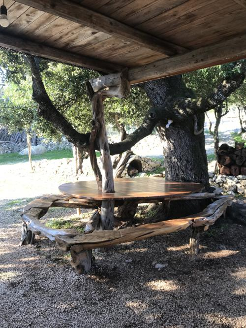 Particular table with tree