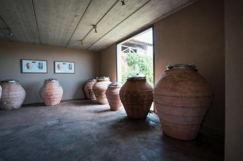 Amphorae for the production of wine as in antiquity