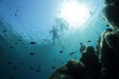 Snorkeling at the Molara pools