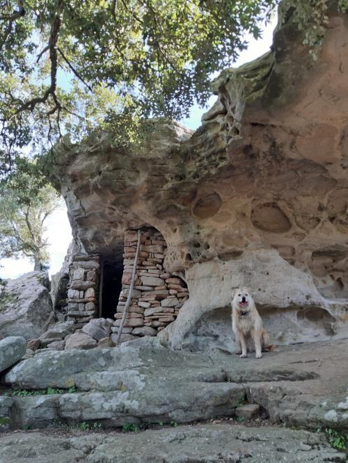 Particular rocks in Villaputzu with dog