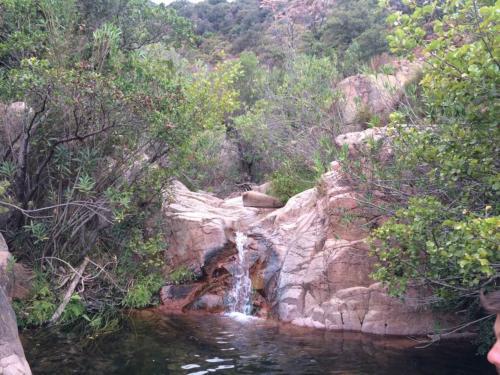 Corso d'acqua tra la vegetazione delle Piscine Naturali del Monte Ferru