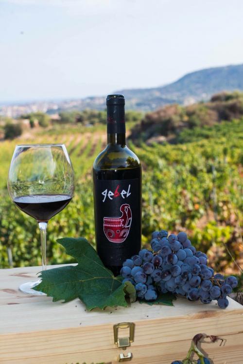 Botella y copa de vino y uvas en un viñedo en Cardedu