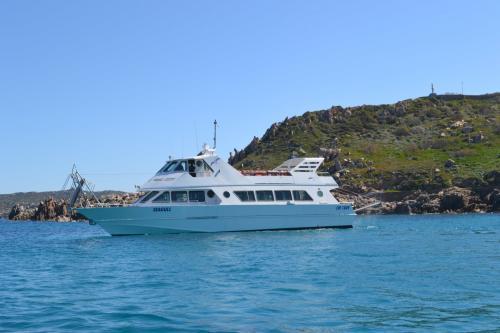 Motor ship in La Maddalena Archipel