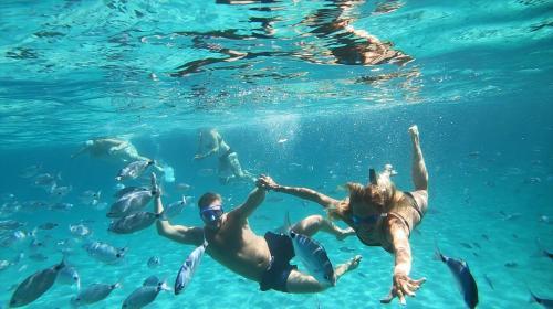 Coppia durante bagno nei fondali cristallini dell'Arcipelago di La Maddalena