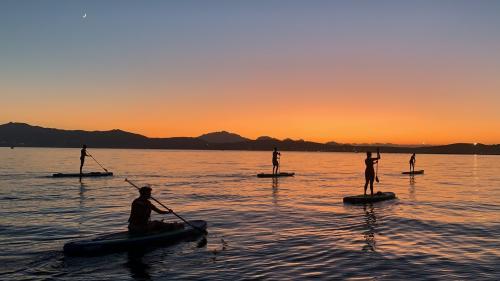 Gruppo di escursionisti in SUP al tramonto a Golfo Aranci