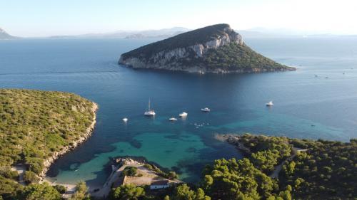 Foto panoramica Isola di Figarolo