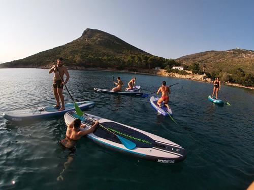 Gruppo di escursionisti in SUP all'Isola di Figarolo