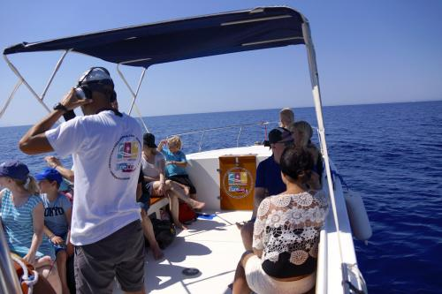 Hikers aboard a boat during a dolphin watching excursion