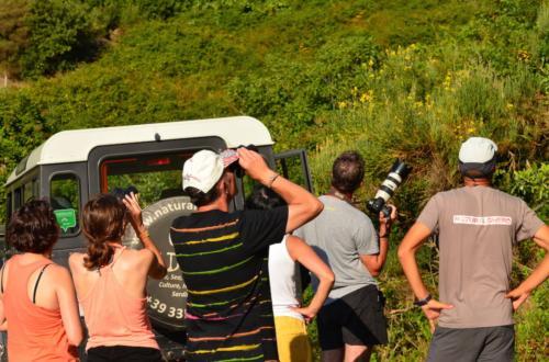 Geländewagen und Wanderer fotografieren während des Ausflugs