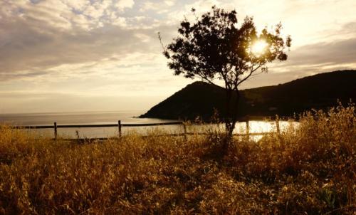 Territoire d'Alghero au coucher du soleil