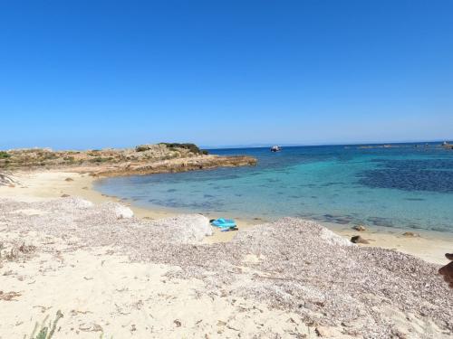 Spiaggia del Golfo dell'Asinara