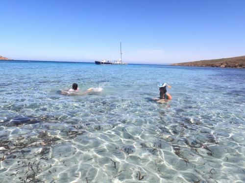 Bagno durante escursione nel Golfo dell'Asinara